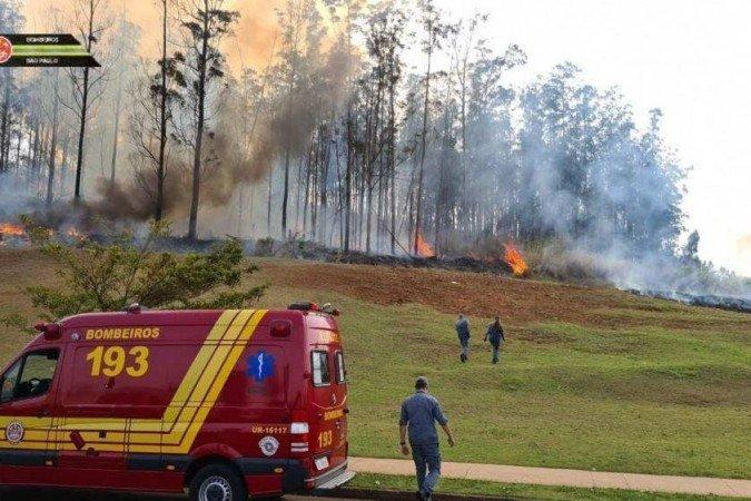 Aeronave cai no interior de SP; empresário, mulher e filhos morrem no acidente